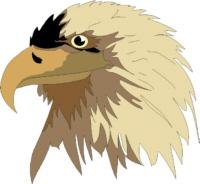 eagle9.jpg